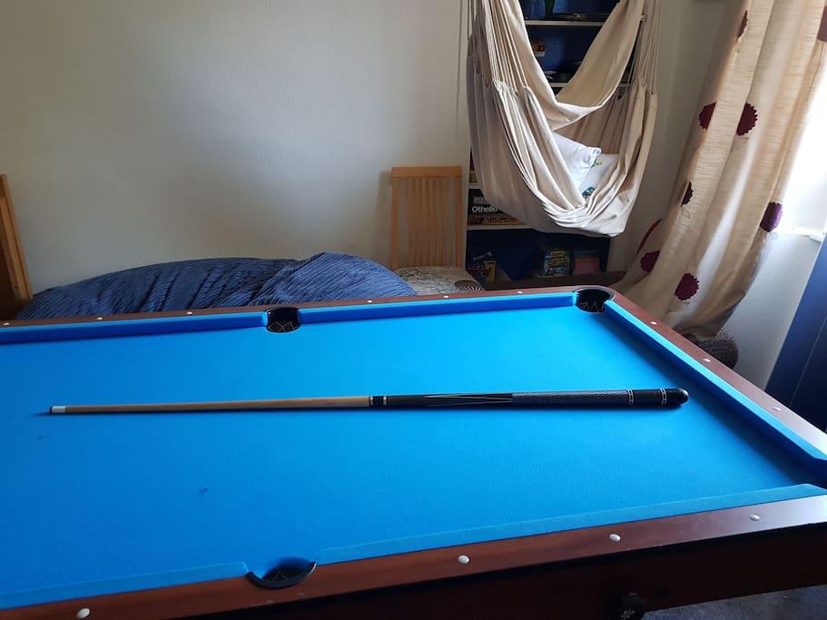 pool/table tennis table