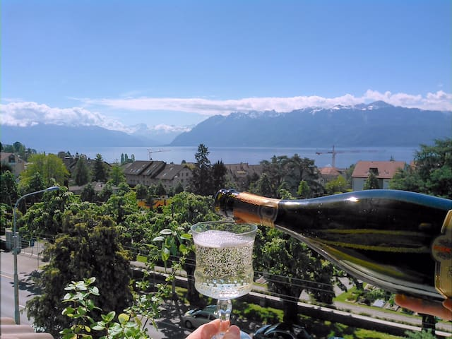 Huge Apartment near Lausanne Center, Stunning View - Pully - アパート