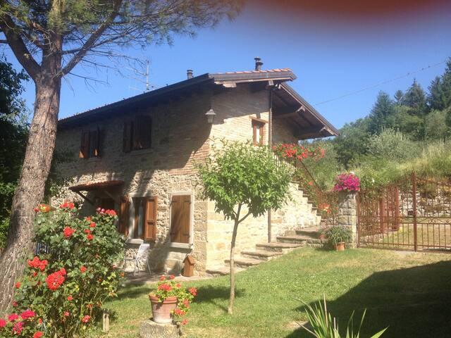 (URL HIDDEN) vallata del Casentino (casa 2) - Pratovecchio - Flat
