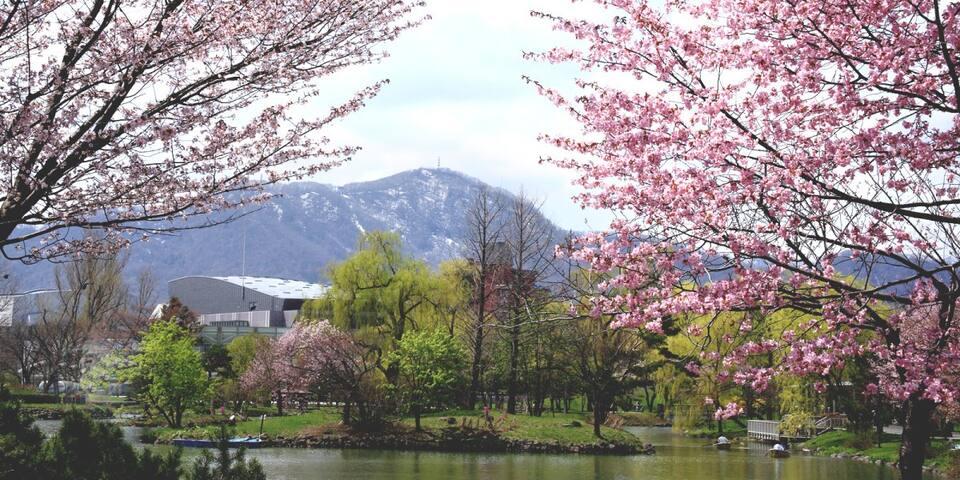 Nakajima koen (park)