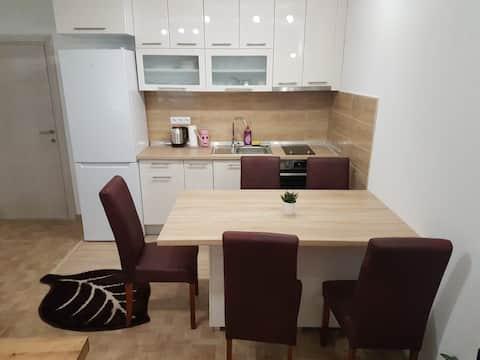 Apartment CentarLux