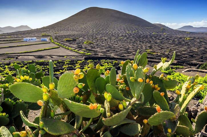 Lugares de interés en Lanzarote