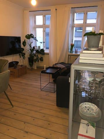 Cozy apartment in the center of Copenhagen.