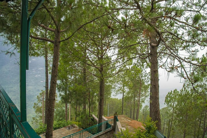 Pine Heights l 8 Bed Rooms Apts l Chef I Kasauli