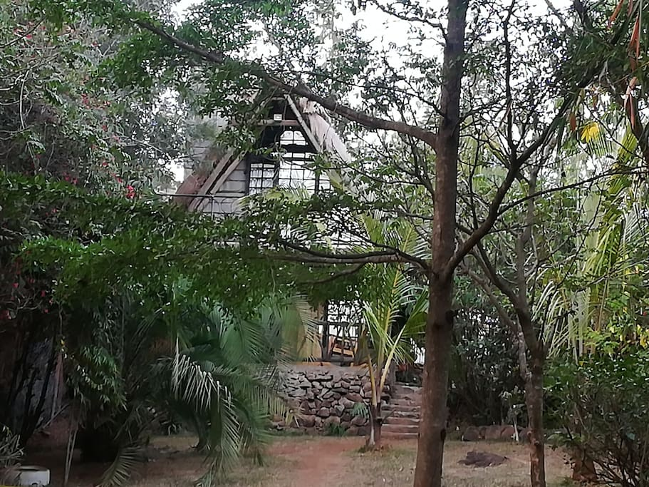 Clean, cozy and quiet cottage with a fire place tuck away in nature and yet 20 minutes to the nearest town and 25 minutes  to Nairobi national park
