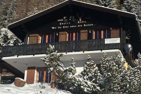 Waanzinnig chalet in de Zwitserse Alpen (Bellwald) - Bellwald - Chalet