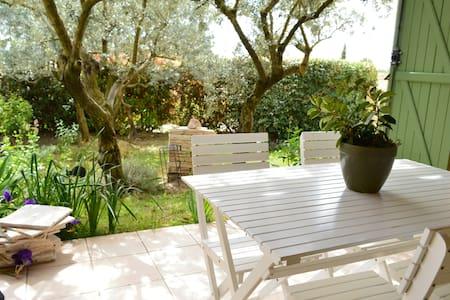Le jardin de Monique - La Motte-d'Aigues - Haus