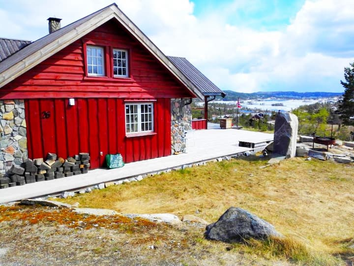 Vertikal-delt hytte, Sylvtjønn, Nissedal, Telemark