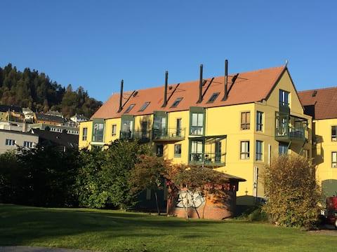 Damsgård Brygge