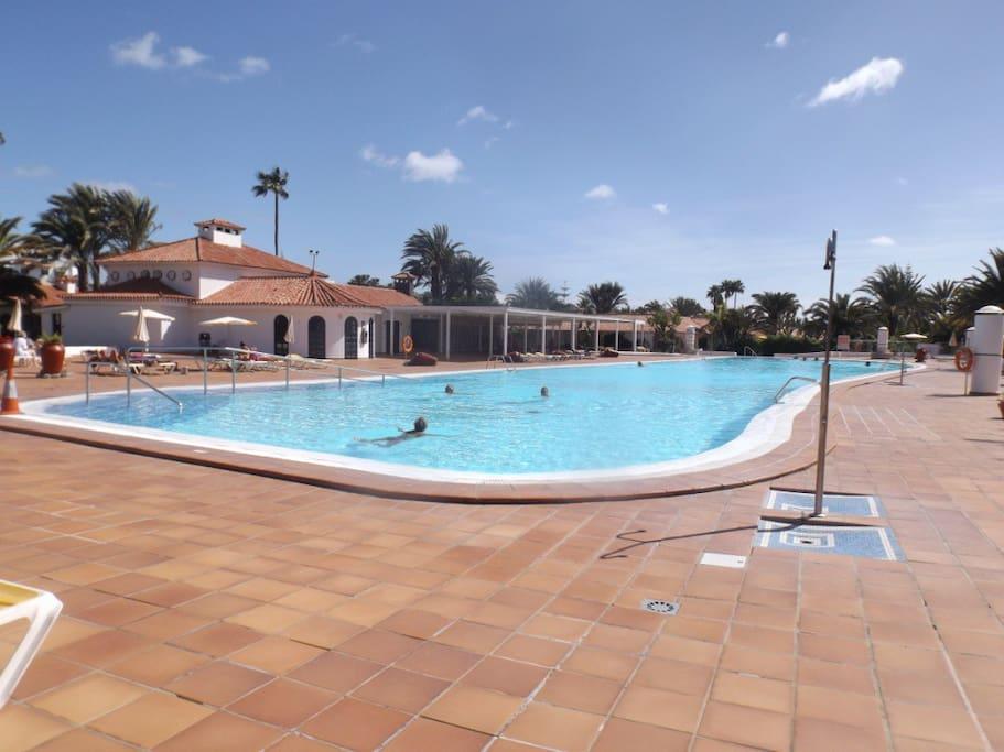 Une immense piscine chauffée à 28 degrés pour vous détendre ou pour faire des longueurs.