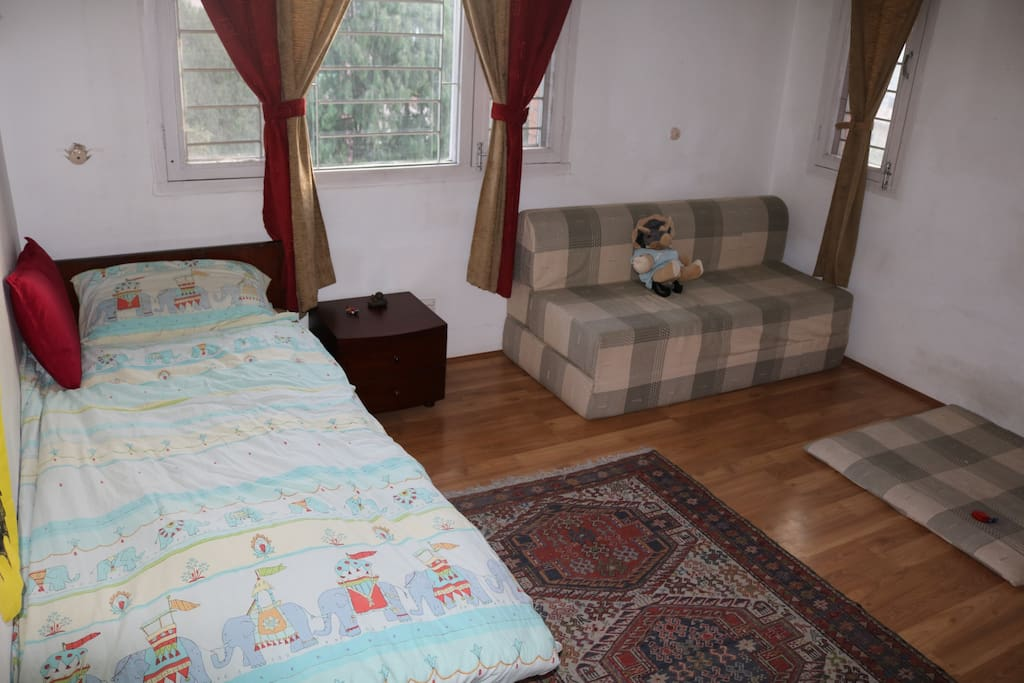 Single bed + double sofa bed for flexible family space, with private bathroom