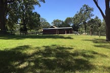 Stables & livestock paddock