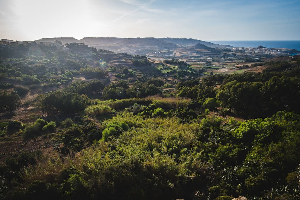 this is your view :) perhaps the greenest in Gozo!