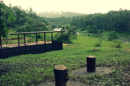 Silver Creek Tentstay Coorg