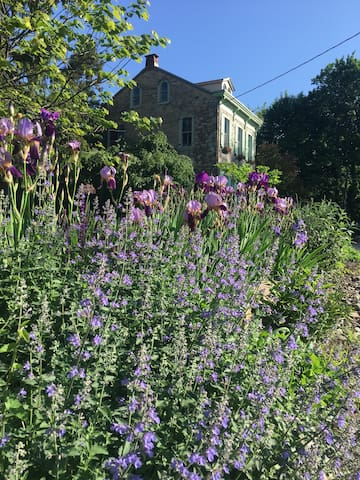 Front bank garden