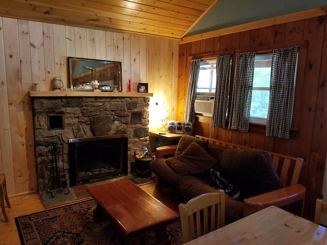 Orange 2 Bedroom Adirondacks Cabin - Johnsburg  - Cabin