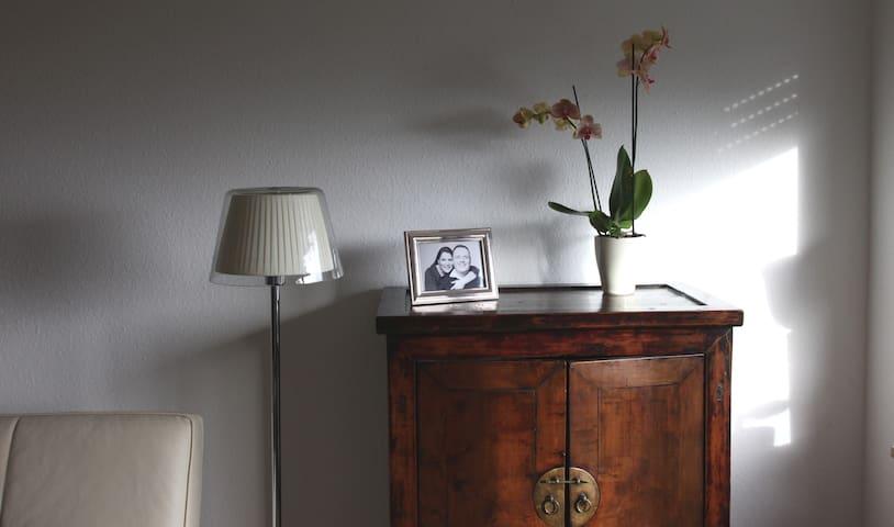 Höri-Seesicht,Terrasse,Luxus,Styl - Gaienhofen - Lägenhet