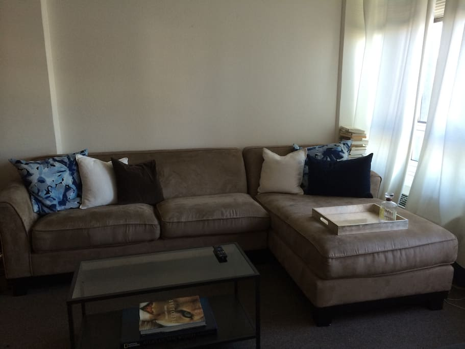 1 Bedroom Apt Downtown San Jose Apartments For Rent In San Jose California United States