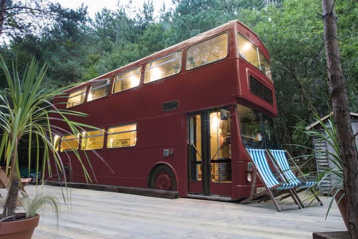 Precioso Autobus en el Valle del Jerte - Arroyomolinos de la Vera - Other