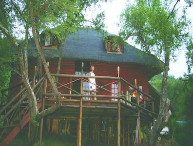 Fish Eagle Log Cabin - 波切夫斯特魯姆(Potchefstroom) - 自然小屋