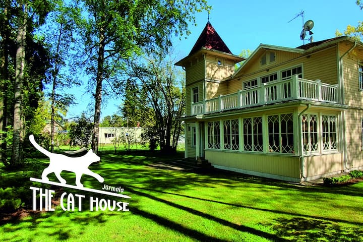 The Cat house - pearl of historical architecture