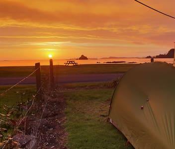 Oakura Beachfront Tent Camping site