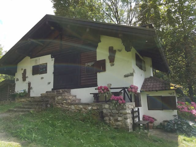 A chalet in the mountains - 5 minutes from town - Transacqua - กระท่อมบนภูเขา