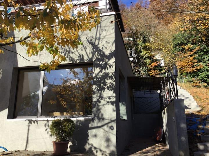 Thun, Gästehaus im Grünen ca. 90 m2, Nähe Zentrum