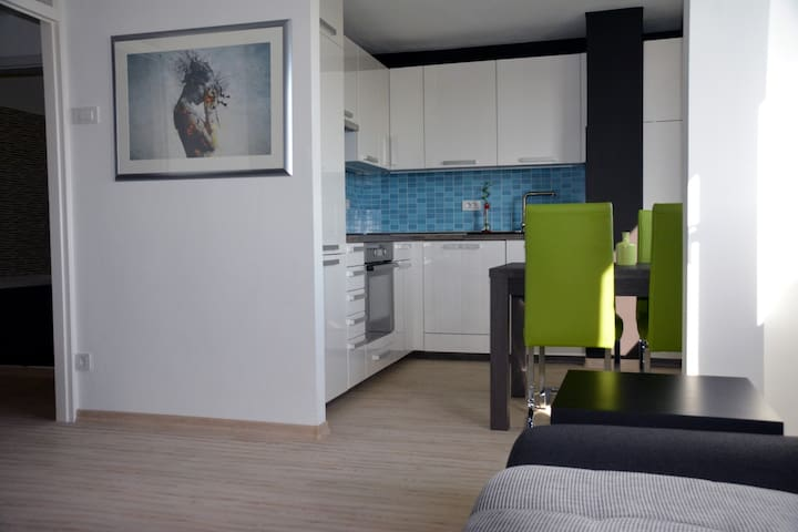 Awesome apartment at an awesome location - Ljubljana