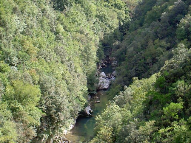 Nel cuore del Parco Nazionale Del Cilento-Paestum - Felitto - House