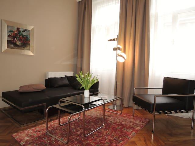 Cosy and sunny apartment near city center