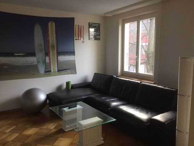 Comfortable 3.5 apartment near city centre - Bern - Flat
