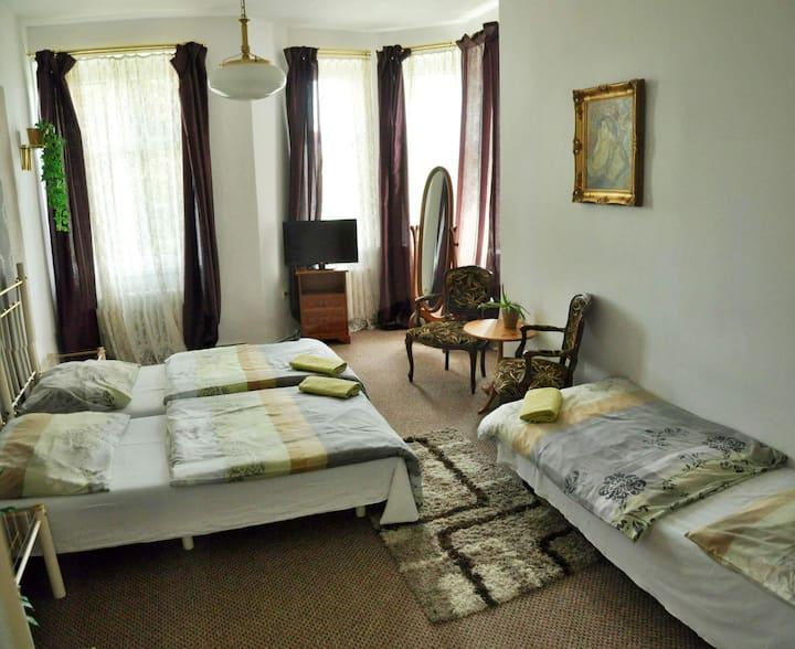 Big room, 3 beds, center of Teplice