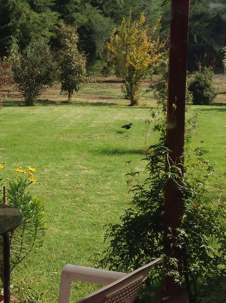 Cozy Country home in Lampa 25 min from Santiago