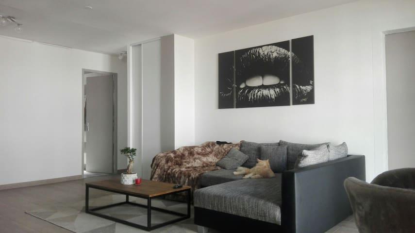 Spacieux et bel appartement 2chambr - Perpignan - Apartment
