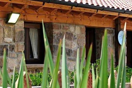 casa en plena montaña,piedra,madera - Vinuesa