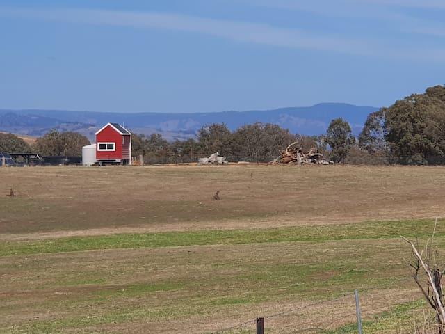 Yass Tiny Farm - Offgrid Tiny House in Top Paddock