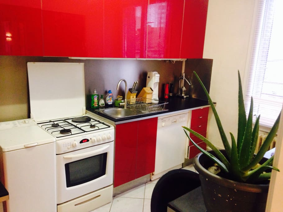 Kitchen (oven with gas, dishwasher, washing machine , toaster, microwave, boiler)