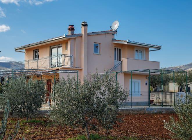Guest House Pelja