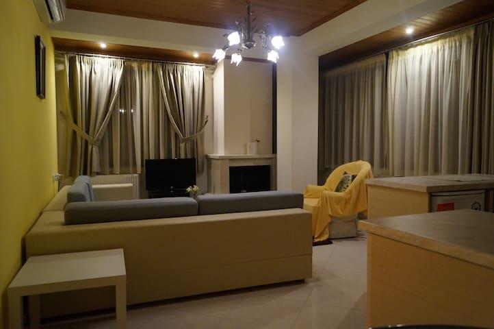 To Agioklima Appartment 6 - Ioannina - Apartment