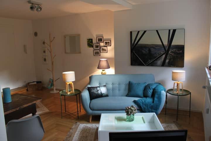 Nice and cozy apartment in Baden-Baden