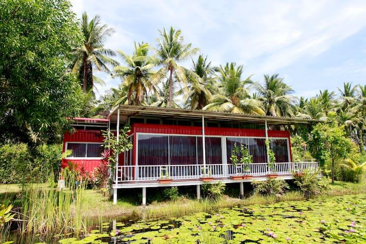 Saree Lagoon Villa Family House