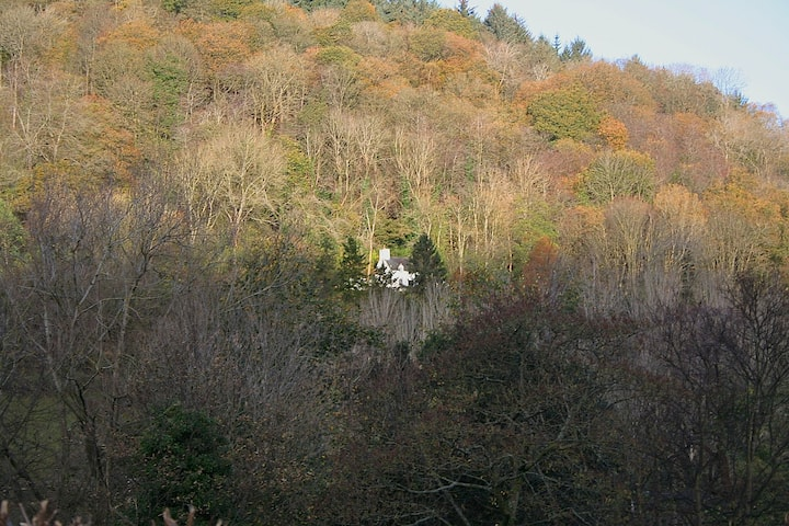 Mellow Mountain Eco Retreat Wales Hot-Tub Sauna