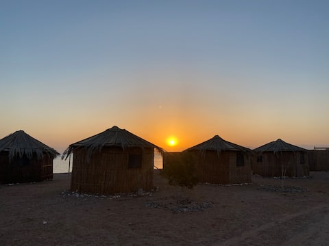 Cleopatra camp