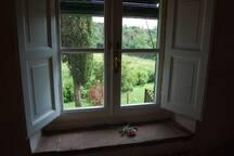 finestra camera rosa