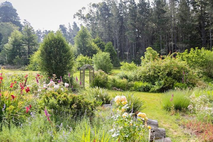 Hummingbird Haven, Flowers & Birds Galore!