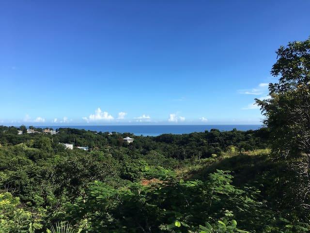 Sweeping Ocean Views