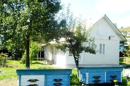 Біла хатинка (White cottage)