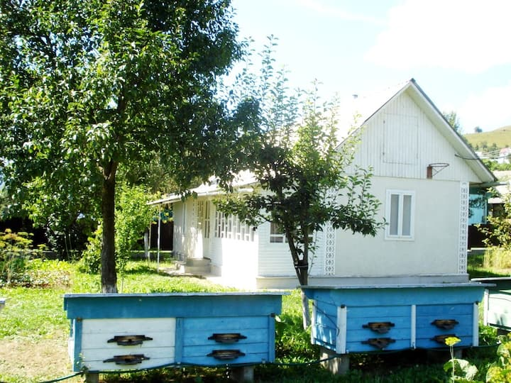 Біла хатинка (White cottage)