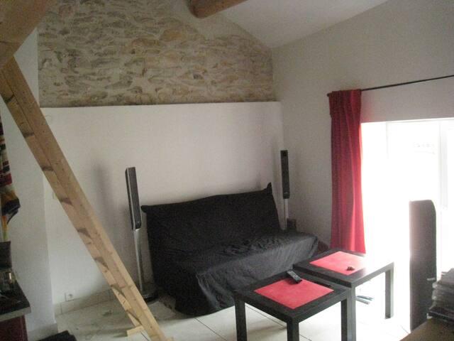 Maison en pierre près d'avignon - Tavel - Casa